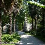 Fotos del Jardín Botánico de Padua,el más antiguo del mundo