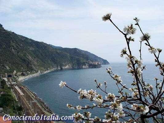Qué ver y hacer en Corniglia, Cinque Terre