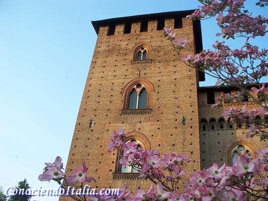 que visitar en Pavia