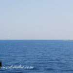 Mesina – Que ver y hacer en Messina – Con Mapa – Sicilia